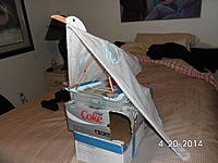 Name: SANY1127.jpg Views: 123 Size: 750.1 KB Description: droopy wing ...  droopy wing