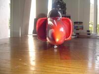 Name: DSC01279.jpg Views: 313 Size: 59.1 KB Description: my pyranah....so sleek!!