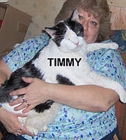 Name: TIMMY.jpg