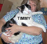Name: TIMMY1080410.jpg