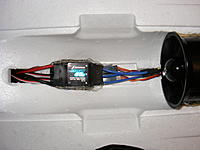 Name: DSCF5585.jpg