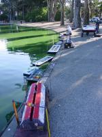 Name: DSC03842.jpg Views: 183 Size: 117.2 KB Description: The barges.