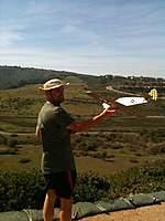 Name: IMG_0611.jpg Views: 142 Size: 74.9 KB Description: Fabio's DAW P-40 woodie