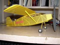 Name: cougar1.jpg