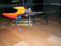 Name: hornet31.jpg