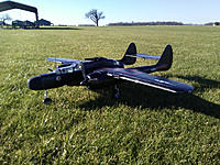 Name: widow 2.jpeg