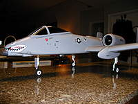 Name: warthog2 - Copy.jpg