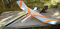 Name: DAN2-81.jpg