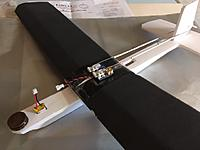 Name: IMG_3717.JPG