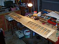 Name: 100_0873.jpg
