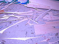 Name: DSCN0029.jpg