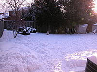 Name: DSCN8042.jpg Views: 49 Size: 302.6 KB Description: Winter in Canada, it's really not this bad, just sometimes! My little dog likes it