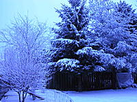 Name: DSCN0054.jpg Views: 199 Size: 326.2 KB Description: good day to stay inside