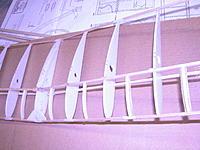 Name: saran wrap-foam rib wing (2).JPG Views: 196 Size: 585.9 KB Description: