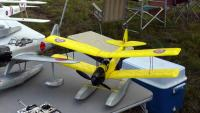 Name: Pico Moth on floats.jpg