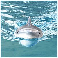 Name: Flytec_V205_Shark_Boat_14.jpg Views: 9 Size: 885.8 KB Description: