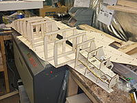 Name: DSCF3556.jpg