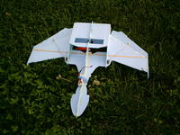 Name: BOP2 002.jpg