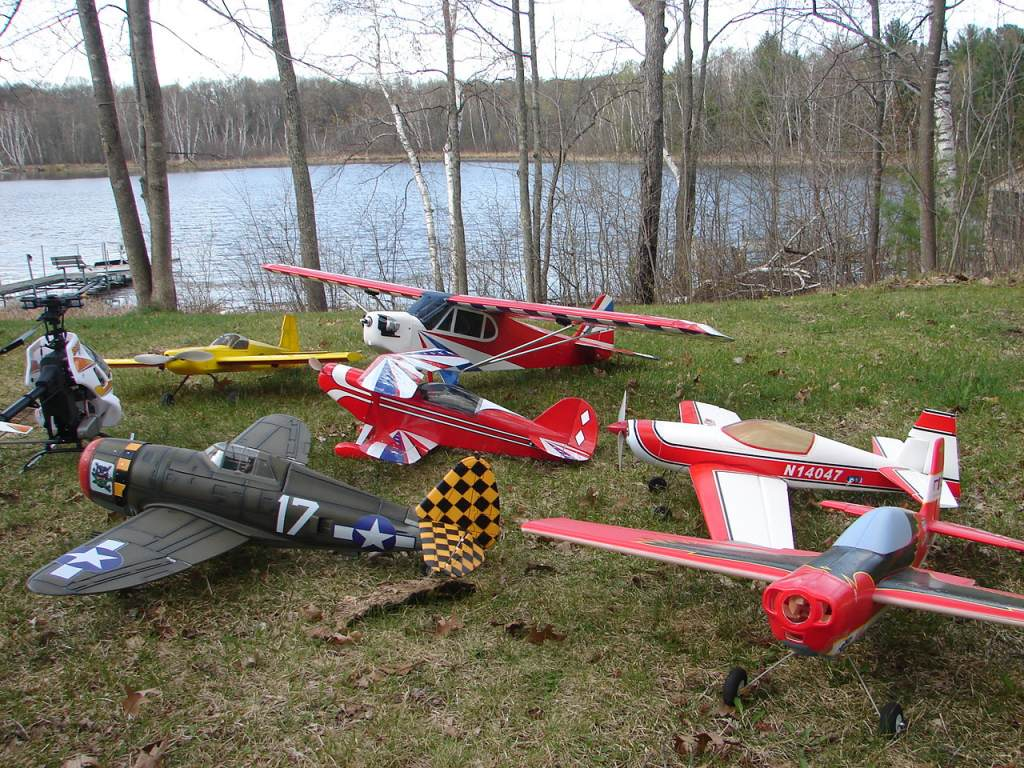 Name: woody plane pile 022.jpg