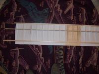 Name: Bottom wing with spars and center carbon tube.jpg Views: 204 Size: 69.8 KB Description: