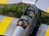 Name: Tiger Moth 003.jpg Views: 142 Size: 60.6 KB Description: