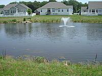 Name: DSC00566.jpg Views: 125 Size: 303.3 KB Description: Our new back yard