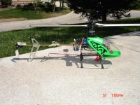 Name: HoneyBeeKingV1.jpg