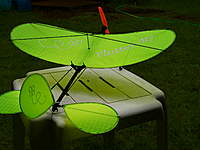 Name: 100_6321.jpg Views: 626 Size: 66.5 KB Description: The Lime Green Mini-Flutter-By Also a sweet flier.