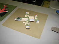 Name: 100_8004.jpg