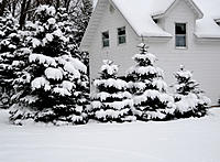 Name: DSC_0967.jpg