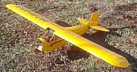 Name: Great Planes cub.jpg