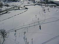 Name: 02-05-11 035.jpg Views: 104 Size: 82.7 KB Description: shadows and tracks