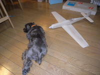 Name: R0014615.jpg