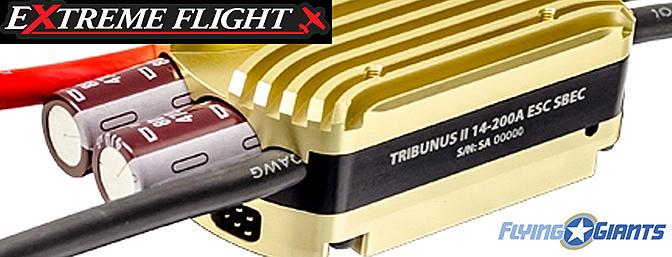 Extreme Flight - Scorpion Tribunus ESC