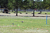 Name: DSC_0112RCGroups Drone Race.jpg