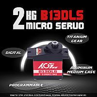 Name: B13DLS-2KG micro servo.jpg Views: 0 Size: 217.9 KB Description: