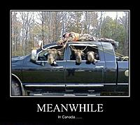 Name: Demotivational-pictures-meanwhile_In_Canada.jpg