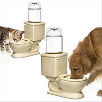 Name: pet water.jpg Views: 373 Size: 32.7 KB Description:
