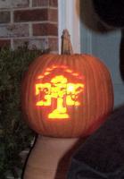 Name: pumpkin1.jpg Views: 332 Size: 27.7 KB Description:
