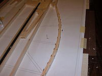 Name: sbach 65 canopy form.jpg