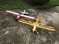 Name: AD973682-CE71-413E-B7E7-47DFDAB6DEBA.jpg