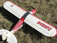 Name: 9B1557E3-434A-4381-9102-D11491CA9045.jpeg