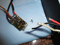 Name: DSC00505.jpg