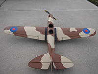 Name: IMG_2983.jpg