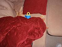 Name: P9061190.jpg Views: 81 Size: 191.1 KB Description: Hey wake up you lazy cat!