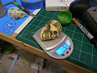 Name: P9041150.jpg