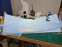Name: P9041154.jpg