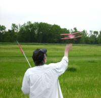 Name: Micro flyn 012e.jpg