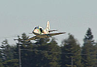 Name: A-4 Tree Top small.jpg