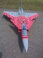 Name: 100_3596.jpg